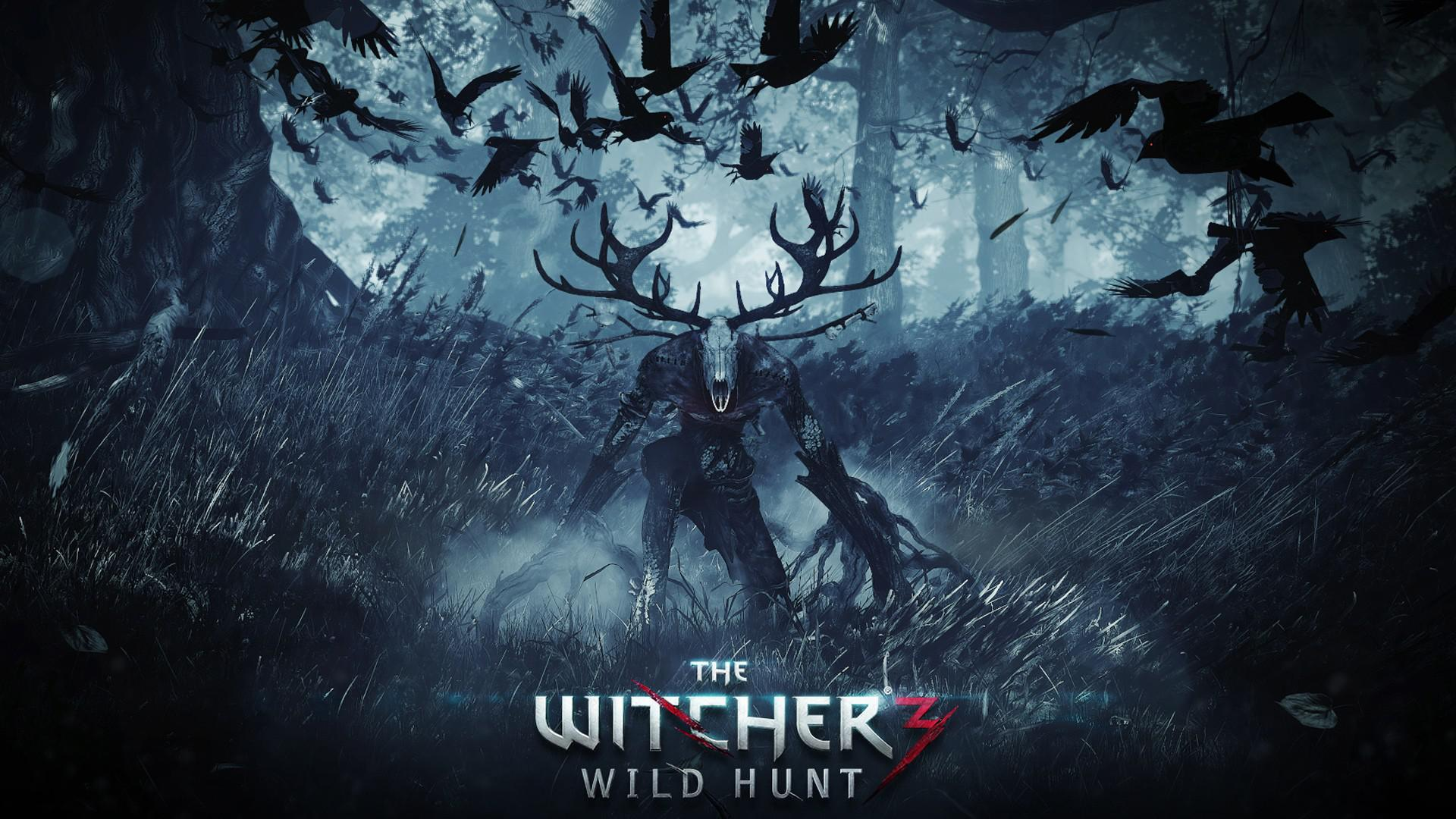 the_witcher_3_wild_hunt-1501289