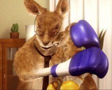 Kangur jest bezpieczny